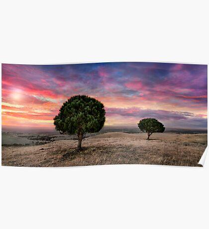 Barossa Valley Sunset Poster