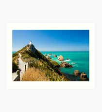 Nugget Point Art Print