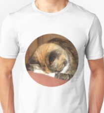 Calico Cat playing hide and seek T-Shirt
