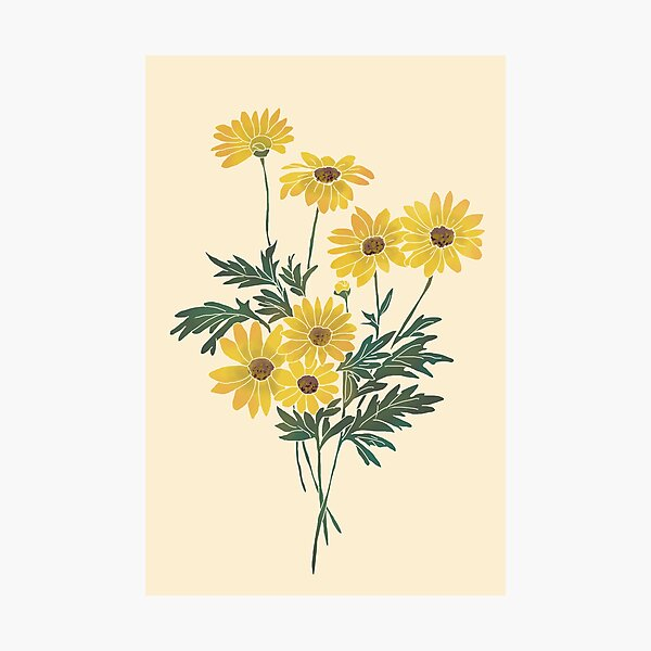 Amazing Vintage Retro Yellow Flowers Sunflowers  Photographic Print