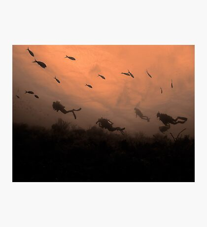 Divers on wall, Nassau, Bahamas Photographic Print