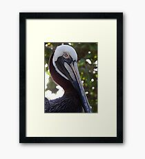 I'm Pretty - isn't it? - Soy Guapa - o no? Framed Print