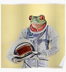 Frog Mission Poster