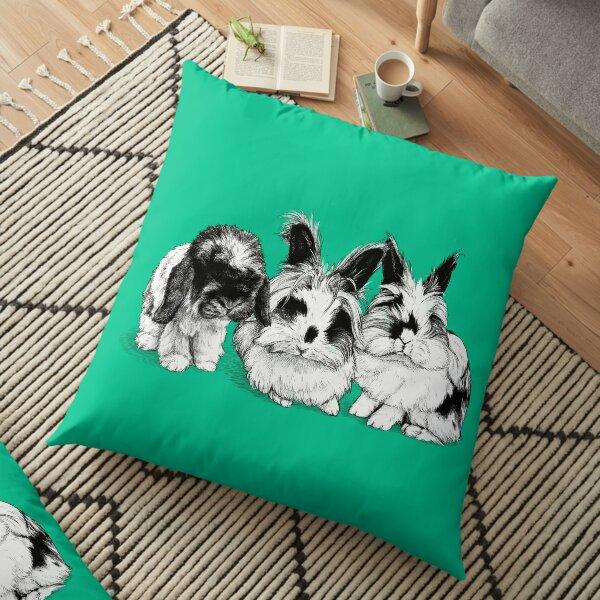 Zumi, Tink and Dash 2 Floor Pillow