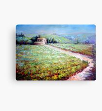 Vineyard in Italy Canvas Print