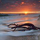 Papamoa Deadwood Drift by Ken Wright