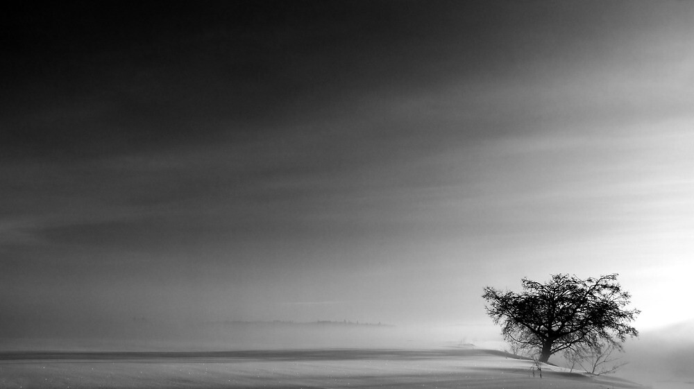 22.2.2012: End of the World by Petri Volanen