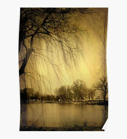 Weeping Willow © Poster
