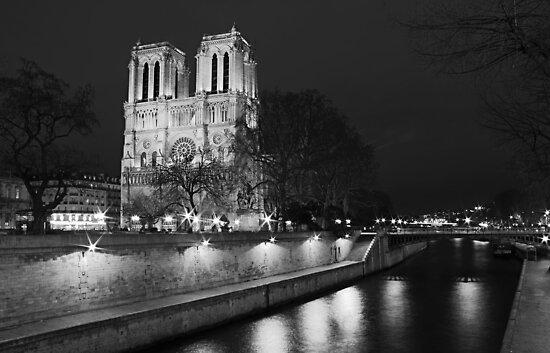 Ah! Paris, Paris... by Irina Chuckowree