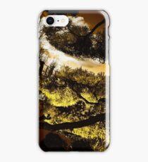 Ponds iPhone Case/Skin