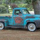 Vintage Ford Truck, Berrima, NSW by Adrian Paul