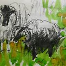 sheep by Alfred Gillespie