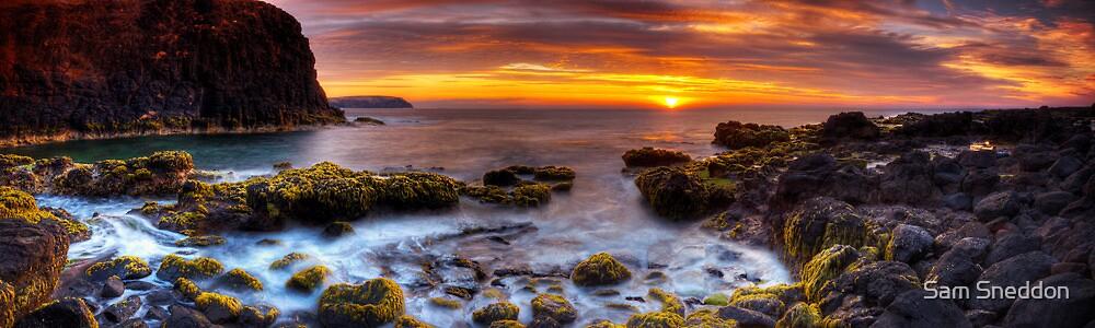 Cape Schanck 05 by Sam Sneddon