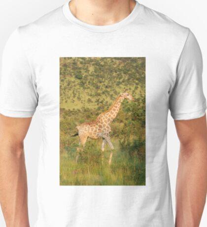 reticulated giraffe - pilanesburg, south africa T-Shirt