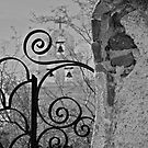 the wrought iron fence by litzlimgo