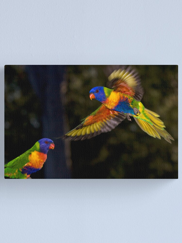 Alternate view of Rainbow Lorikeet Canvas Print