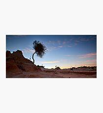 Morning Has Broken - Mungo, NSW Photographic Print