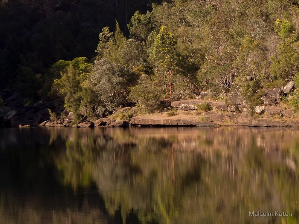 Reflections at the Basin - Bents Basin, NSW by Malcolm Katon