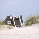 Beach Stairs by designingjudy