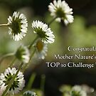 TOP 10 Challenge Winner Banner for Mother Nature's Finest! by marens