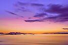 Alba Evening by David Alexander Elder