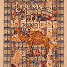 Camel by Steve Nielsen