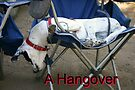 A Hangover by CarolM