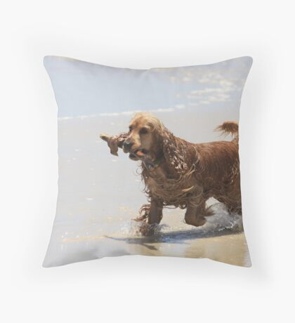 Gemini Running on the Beach at Tallebudgera Creek Entrance Throw Pillow