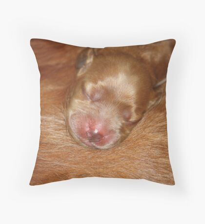 Gemini & Rosie's New Pup #4  Throw Pillow
