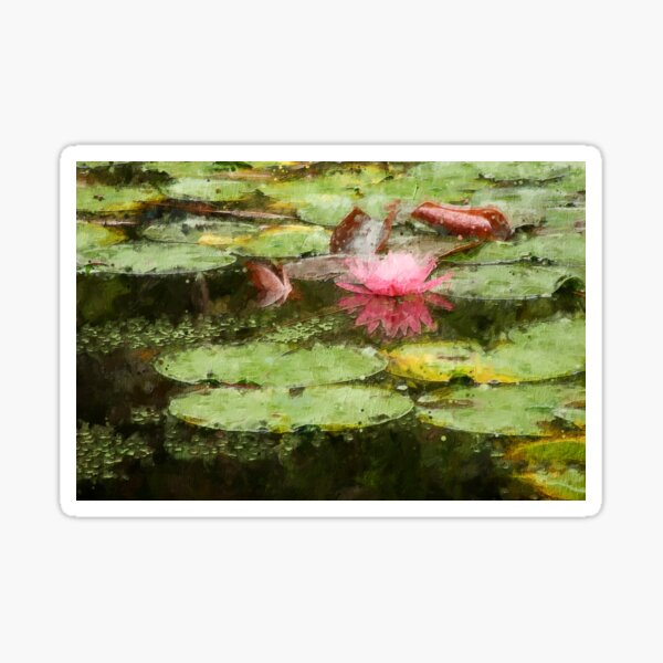 Pink Lily Pad Flower Art Sticker
