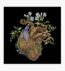 Heart - Wood Photographic Print