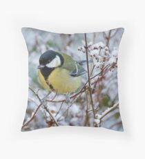 Great tit on frosty morning, County Kilkenny, Ireland Throw Pillow