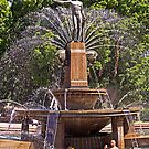 From the Sublime to the Ridiculous - Archibald Fountain Idiots by TonyCrehan