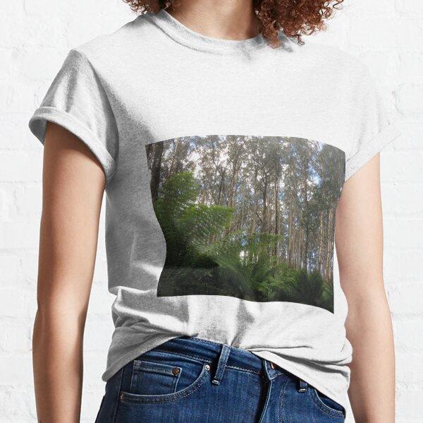 Where the Mountain Ash meets the ferns, Toolangi, Victoria, Australia Classic T-Shirt