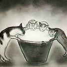 le baquet de lait... by karina73020