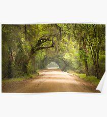 Charleston SC Edisto Island Dirt Road - The Deep South Poster