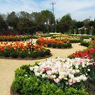 Botanical Beauties by Jaclyn Hughes