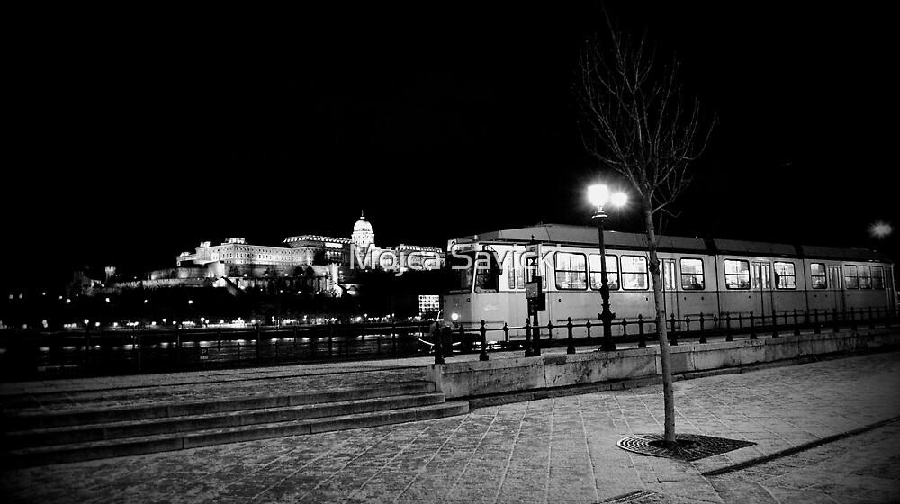 Budapest by Mojca Savicki