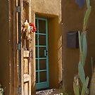 Barrio Doors by Linda Gregory