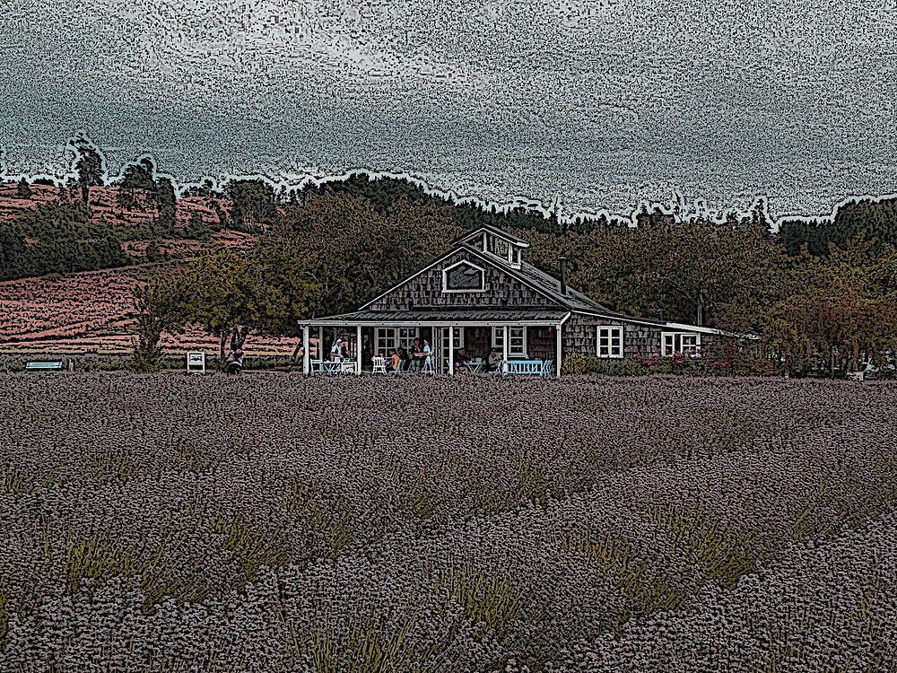 La casa de Té Lavanda........... by cieloverde