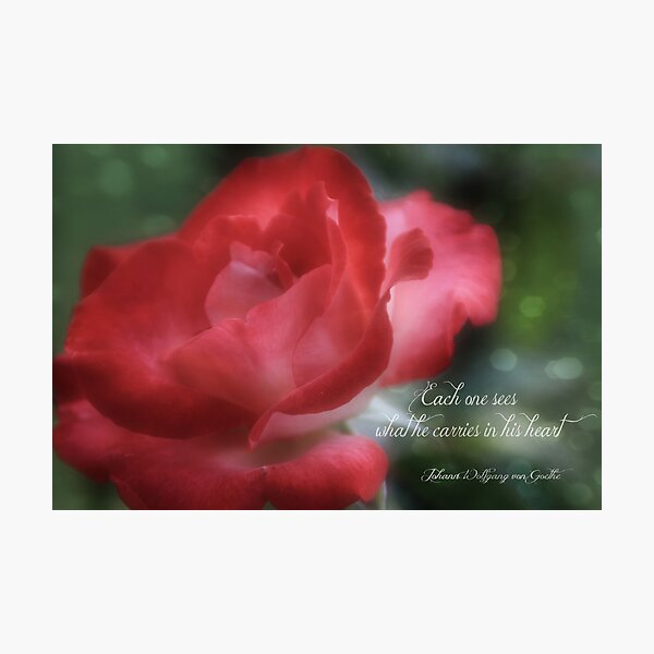 See With Your Heart Photographic Print