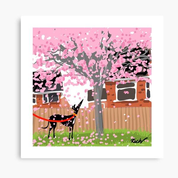 Blossom Hound Canvas Print