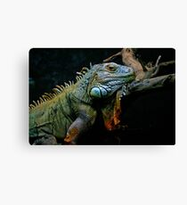 Sleepy Dinosaur Canvas Print