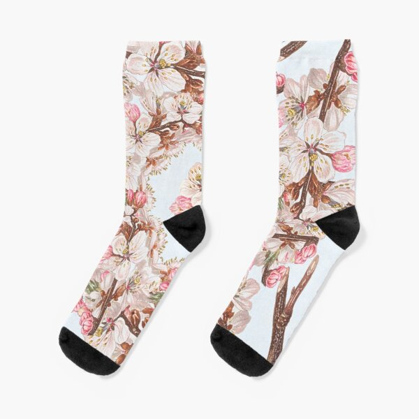 Spring is the vehicle of hope- blossom branch  Socks