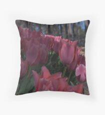 Path of Beauty Throw Pillow