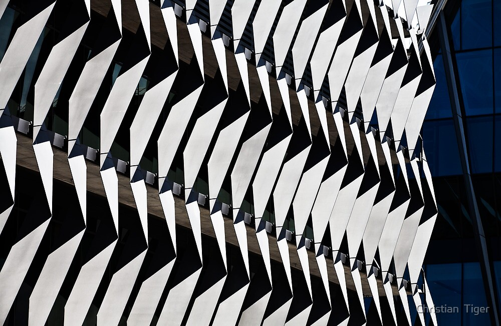 ABC building, South Bank, Brisbane by Christian  Tiger