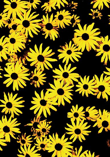Funky Yellow Flowers by StudioDestruct