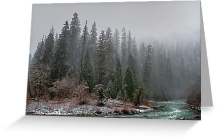 The Way We See It ~ Quartzville Creek ~ by Charles & Patricia   Harkins ~ Picture Oregon
