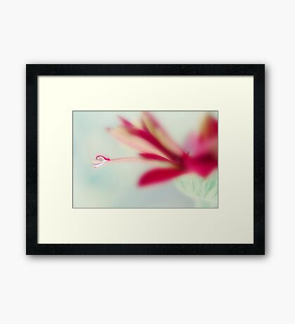 heart bubble Framed Print