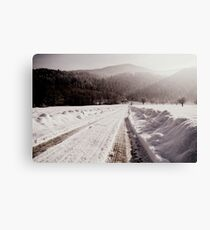 Winter Ways Canvas Print